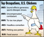 US Chicken Stats